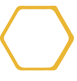 single-honeycomb