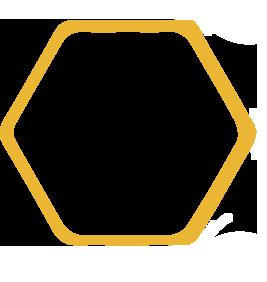 single-honeycomb